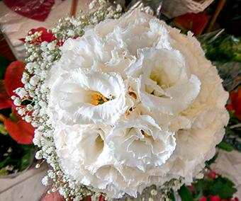 פרחי פנחס - זרי כלה הוד השרון