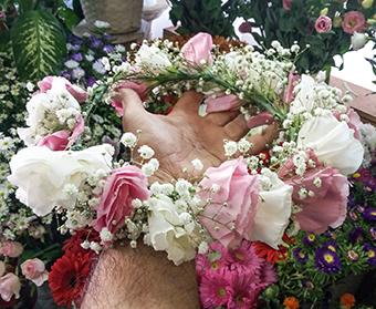 פרחי פנחס - זרים לראש