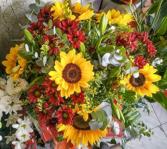פרחי פנחס - פרחים לשבת