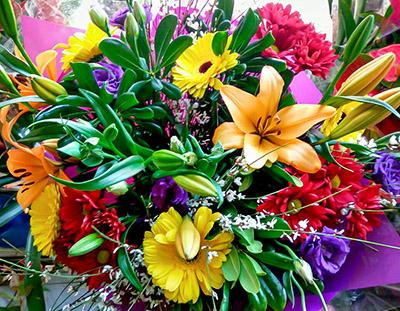 פרחי פנחס - מגוון זרים לכל ארוע