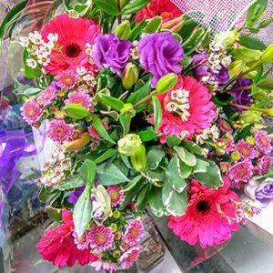 פרחי פנחס - זרים טריים
