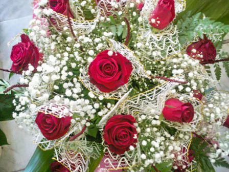 פרחי פנחס - פרחים