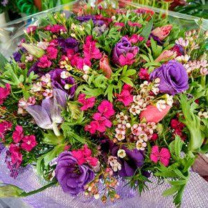 פרחי פנחס - פרחי הילה זרים