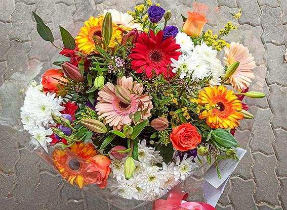 פרחי פנחס - זר חרציות מרהיב