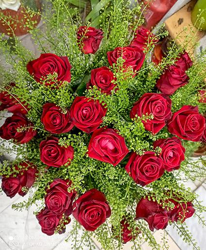 פרחי פנחס - פרחי הילה - ורדים