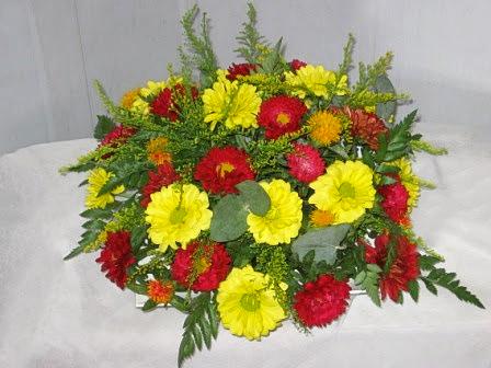 פרחי פנחס - הוד השרון