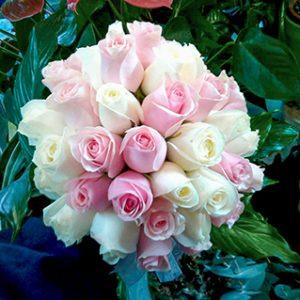 פרחי פנחס - פרחים בהוד השרון