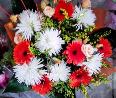 פרחי פנחס זרי פרחים