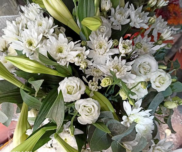 פרחי פנחס זרי פרחים טריים