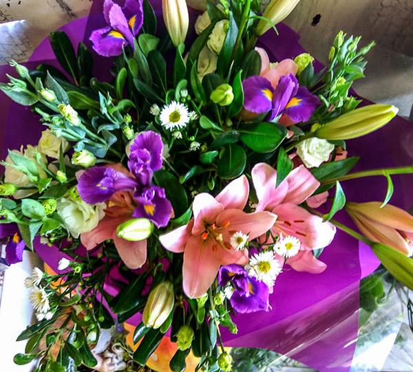 פרחי פנחס הוד השרון