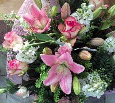 פרחי פנחס פרחים הוד השרון