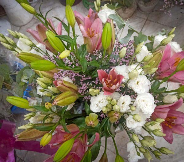 פרחי פנחס - זרים