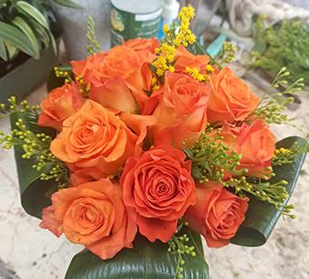 פרחי פנחס